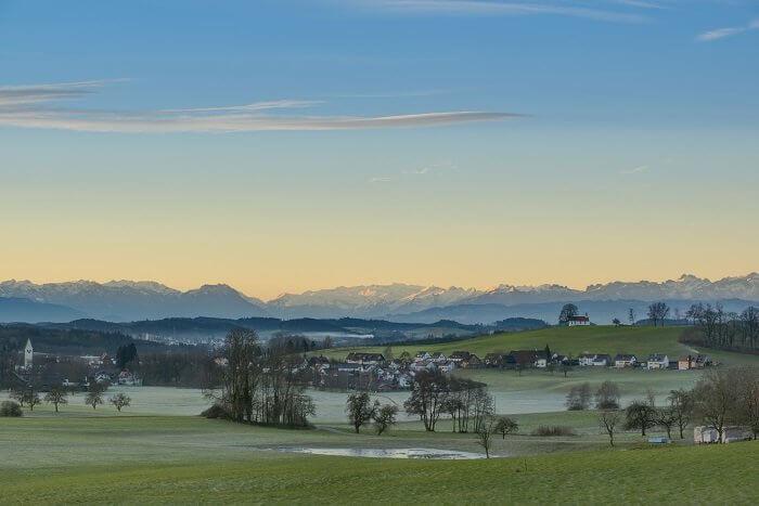 Immobilienmakler Amtzell